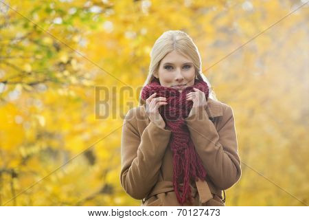 Portrait of beautiful woman holding muffler around neck in park during autumn
