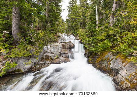Rapids on the Paradise River Mt. Rainier National Park Washington