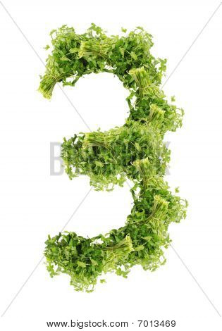 three digits of parsley