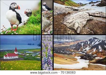 Icelandic landscapes collage