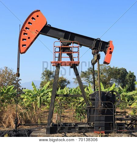 Oil Pump Jack (sucker Rod Beam) In The Banana Field On Sunny Day