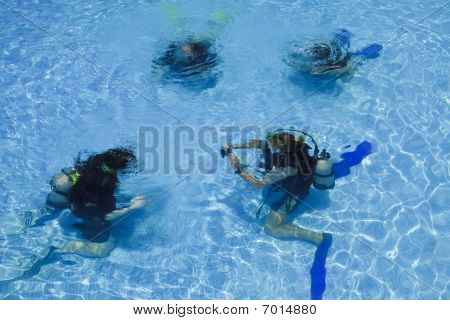 Divers In A Swimming Pool.