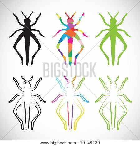 Vector Image Of An Grasshoppers