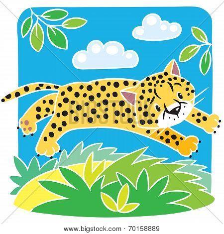 Little cheetah or jaguar coloring book