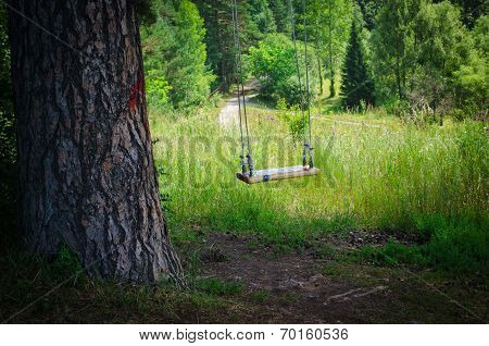 Swinging Empty Children's Swing In Forest