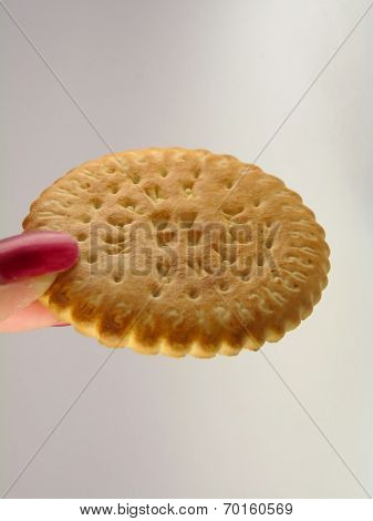 Round Delicious Sugar Cookies In The Female Hand