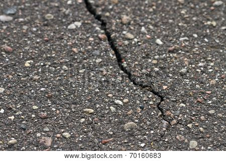Crack In The Sidewalk