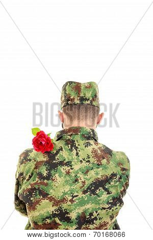 Back Of A Soldier With Red Rose Over Shoulder