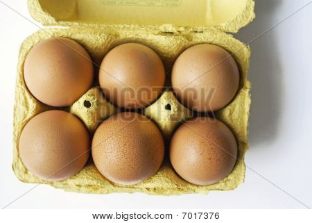Egg Box With Six Eggs