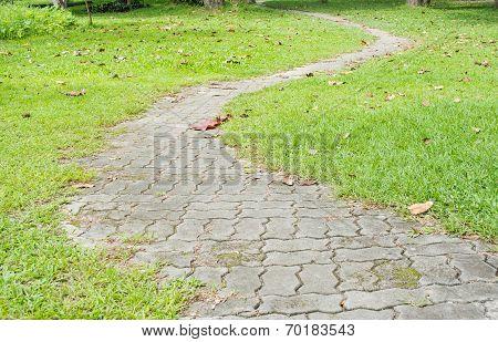 Small Walk Way