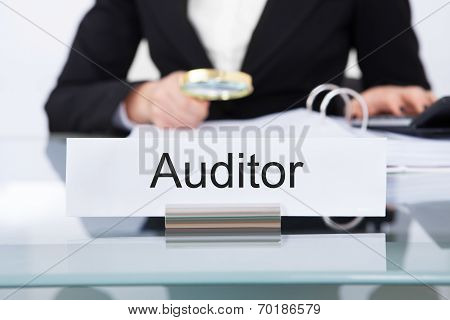 Auditor Scrutinizing Financial Documents