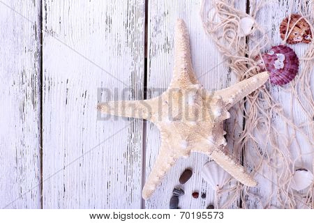 Decor of seashells and seastar close-up on blue wooden table