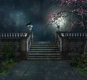 picture of mystery  - View of a mysterious park at night with a crow - JPG
