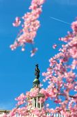 Постер, плакат: Statue of Freedom in cherry blossoms and visible plane against a clear blue sky