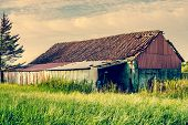 image of barn house  - Old barn house surrounded by tall grass - JPG
