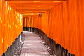 foto of inari  - Fushimi Inari Taisha Shrine in Kyoto Japan - JPG