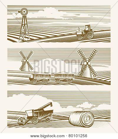 Agriculture landscapes