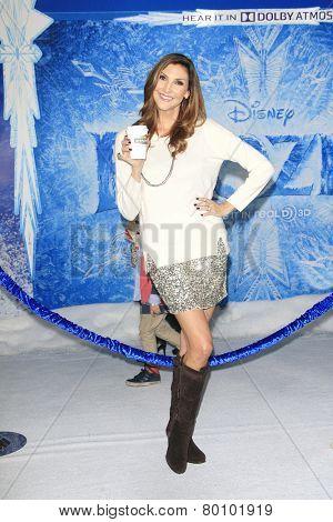 LOS ANGELES - NOV 19: Heather McDonald at the premiere of Walt Disney Animation Studios' 'Frozen' at the El Capitan Theater on November 19, 2013 in Los Angeles, CA