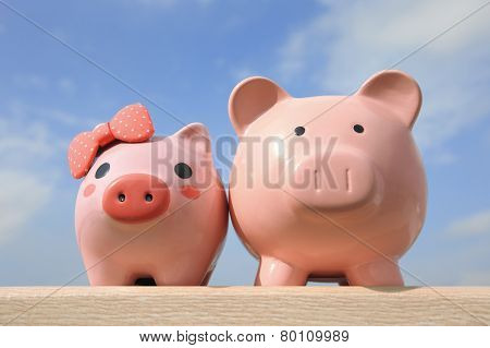 Pink Piggy Bank Couple