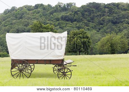 Covered Wagon In Fields