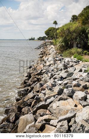 Granite Seawall And Palm Trees On Coast