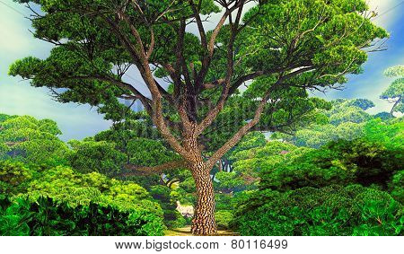 Mighty tree in the park
