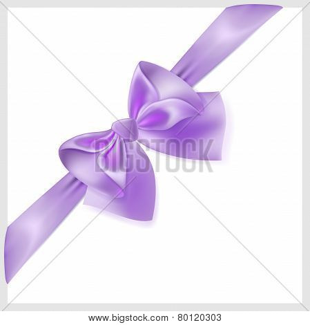 Violet Bow With Ribbon, Located Diagonally