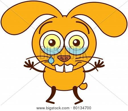 Yellow bunny crying and feeling sad