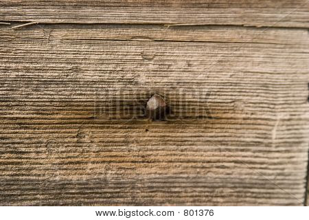 dry weathered wood with nail