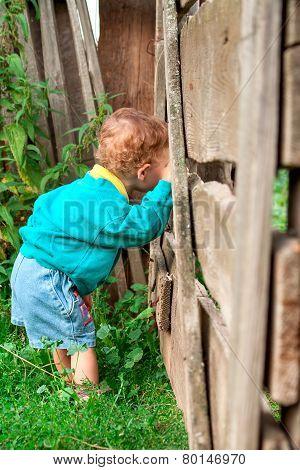 The Boy Near The Fence
