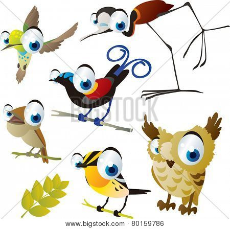 vector isolated cartoon cute animals set: birds: jacana, hummingbird, bird of paradise, owl, nightingale, warbler