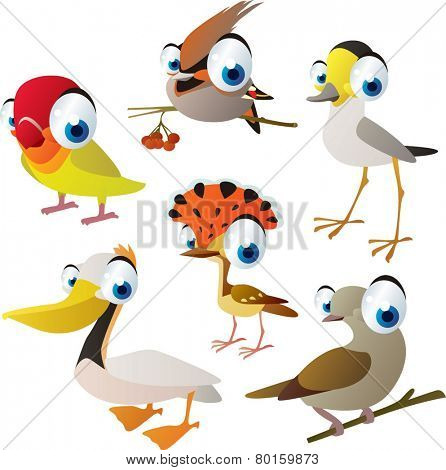 vector isolated cartoon cute animals set: birds: lovebird, waxwing, plover, pelican, dove, flycatcher