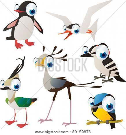 vector isolated cartoon cute animals set: birds: penguin, tern, woodpecker, titmouse, secretary bird, lapwing