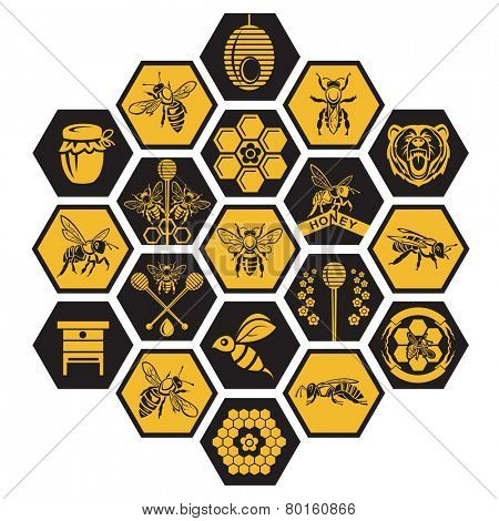 labels with bee and honey on black background