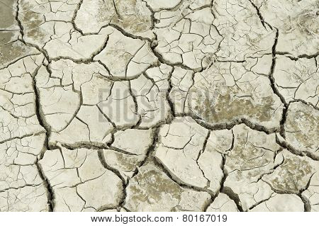 Dry soil at former sea bed of the Aral sea.