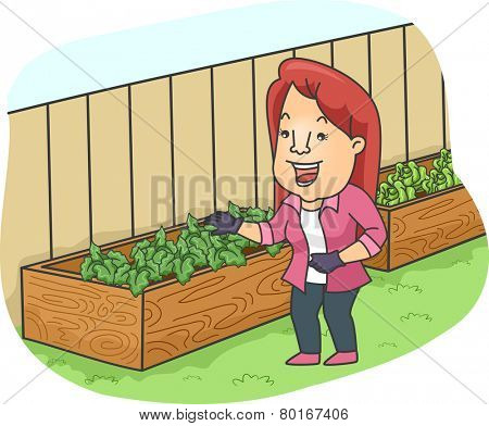 Illustration of a Woman Checking Out the Plants in Her Raised Garden