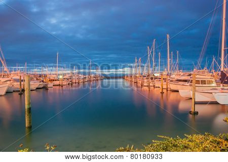 Marina At Night, Tauranga New Zealand.