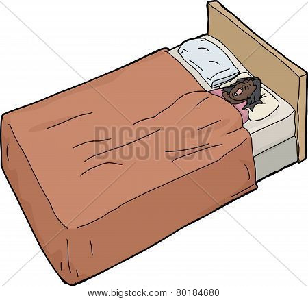 Isolated Bed With Woman