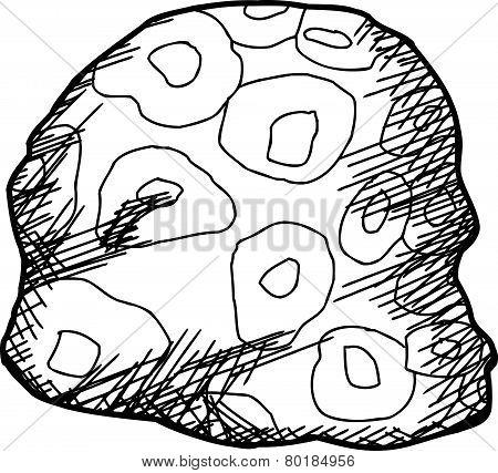 Outline Of Spherulitic Rhyolite Rock