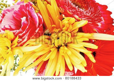 red and orange gerbera, tuberose and gold mums flowers bouquet isolated on a pure white background