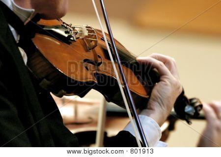 Symphony Violin