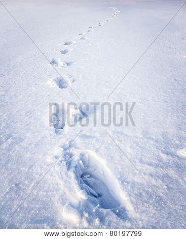 Steps On Snow