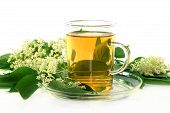 pic of elderflower  - a cup of Elderflower tea with fresh flowers - JPG