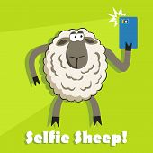picture of goofy  - Selfie goofy sheep holding smartphone and taking self portrait with bright flash - JPG