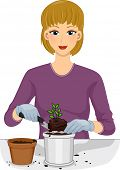 picture of transfer  - Illustration of a Woman Transferring a Plant From One Pot to Another - JPG