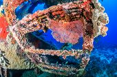 stock photo of wrecking  - Coral encrusted stairs on an underwater wreck - JPG