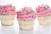 Three cupcakes with sprinkles