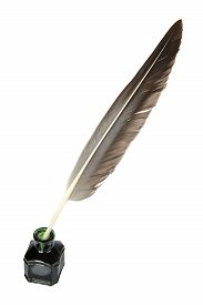 picture of taupe  - Taupe quill in the inkwell on a white background - JPG