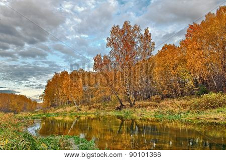 mellow autumn on river bank