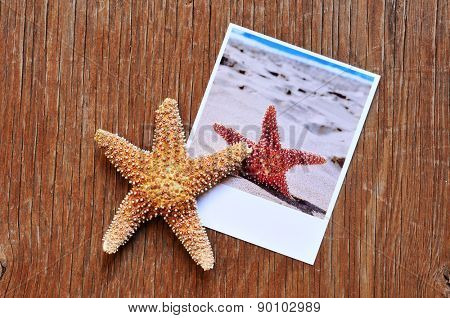 high-angle shot of a starfish and an instant photo of a starfish on the sand of a beach, placed on a rustic wooden surface